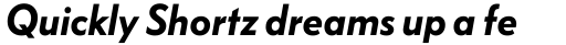 FF Bauer Grotesk Std Demi Bold Italic sample