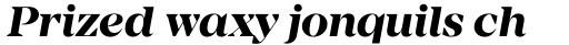 Mirador Bold Italic sample