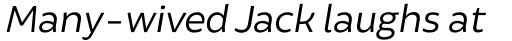 Brocha Alt Book Italic sample