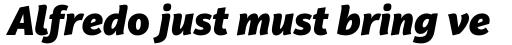 PF Adamant Sans Pro Black Italic sample