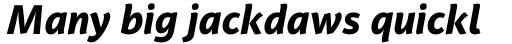 PF Adamant Sans Pro ExtraBold Italic sample