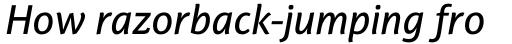 PF Adamant Sans Pro Medium Italic sample