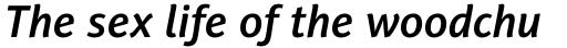 PF Adamant Sans Pro SemiBold Italic sample