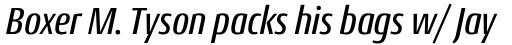 Conto Condensed Medium Italic sample