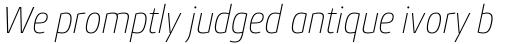 Conto Narrow Thin Italic sample