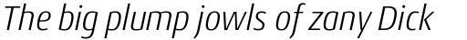 Conto Narrow Light Italic sample