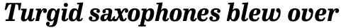FF Hertz Pro Extra Bold Italic sample