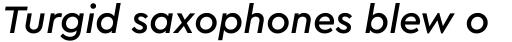Cera PRO Medium Italic sample