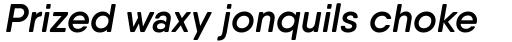 Qanelas Soft Semi Bold Italic sample