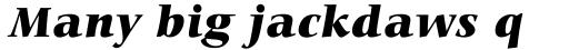 Carmina BT Std Black Italic sample