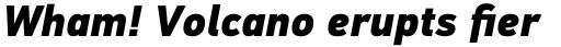 PF DIN Text Std Black Italic sample