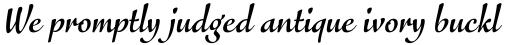 FF Eggo Pro Bold Italic sample
