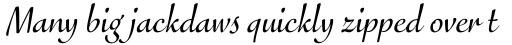 FF Eggo Pro Regular Italic sample