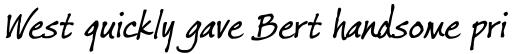 Ford's Folly Italic sample