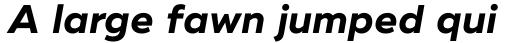 Ridley Grotesk Bold Italic sample