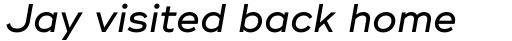 Ridley Grotesk Medium Italic sample