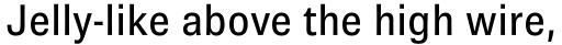 Brown Pro Medium sample
