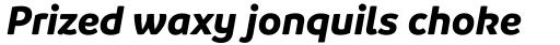 Branding Bold Italic sample