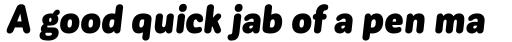 Corporative Sans Round Condensed Black Italic sample
