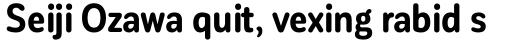 Corporative Sans Round Condensed Bold sample