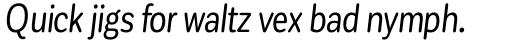 Corporative Sans Round Condensed Italic sample