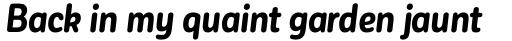 Corporative Sans Round Condensed Alt Bold Italic sample