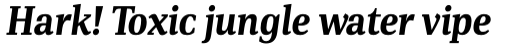 PF DIN Serif Bold Italic sample