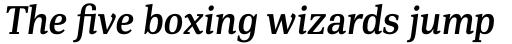 PF DIN Serif Medium Italic sample