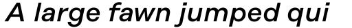 Rational Display Medium Italic sample