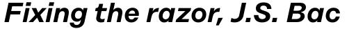 Rational Text SemiBold Italic sample