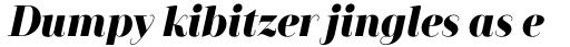 Camila Black Italic sample