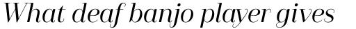 Camila Medium Italic sample