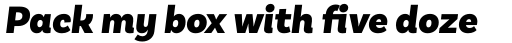 Basic Sans Black Italic sample