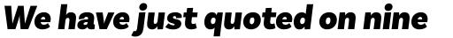 Basic Sans Alt Black Italic sample