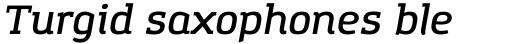 Amazing Grotesk DemiBold Italic sample