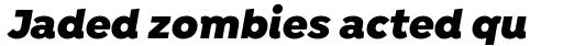 Isidora Black Italic sample
