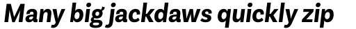 Basic Sans Alt Narrow Bold It sample