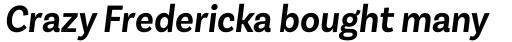 Basic Sans Alt Narrow Semi Bold It sample