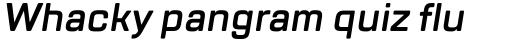 TT Lakes DemiBold Italic sample