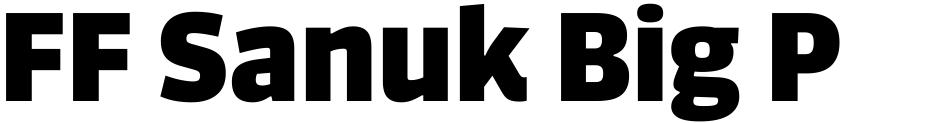 Click to view  FF Sanuk Big Pro font, character set and sample text