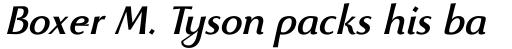 Beatrix Antiqua Medium Italic sample