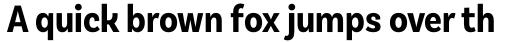 Basic Sans Alt Cnd Bold sample