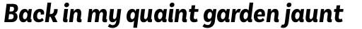 Basic Sans Cnd Bold It sample