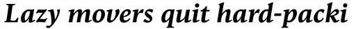 Goodchild Pro Bold Italic sample