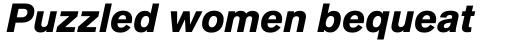 Applied Sans Pro Black Italic sample