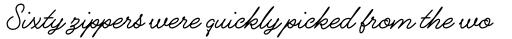 Alfons Script Medium sample