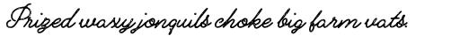 Alfons Script Printed2 sample