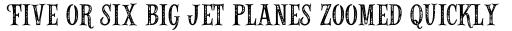 Alfons Serif Printed sample