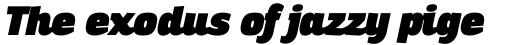 Altair Ultra Italic sample