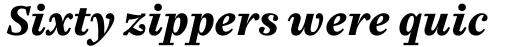 FF Casus Pro Black Italic sample